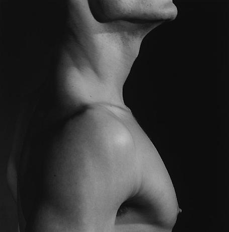The Robert Mapplethorpe Foundation Inc.